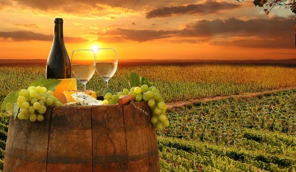 Wine Lovers Cruises Shari Marsh Travel